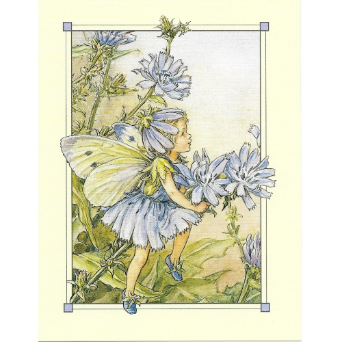 Postal Antigo Importado The Chicory Fairy - Cicely