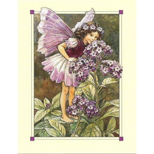 Postal Antigo Importado The Heliotrope Fairy - Cicely