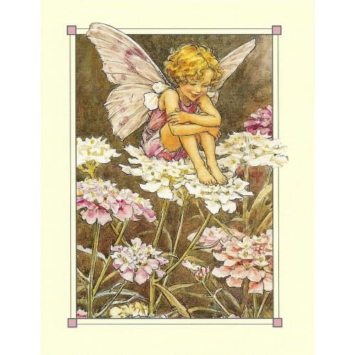 Postal Antigo Importado The Candytuft Fairy - Cicely