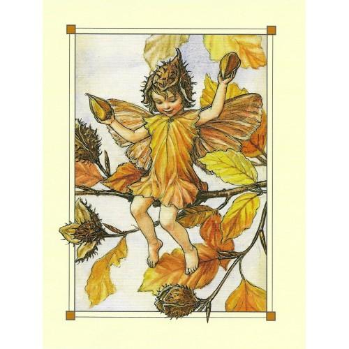 Postal Antigo Importado The Rose-Bay Willow-Herb Fairy - Cicely