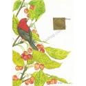 Postalete Antigo Importado Songbird CVM - Current