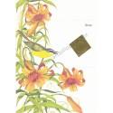 Postalete Antigo Importado Songbird CAM - Current