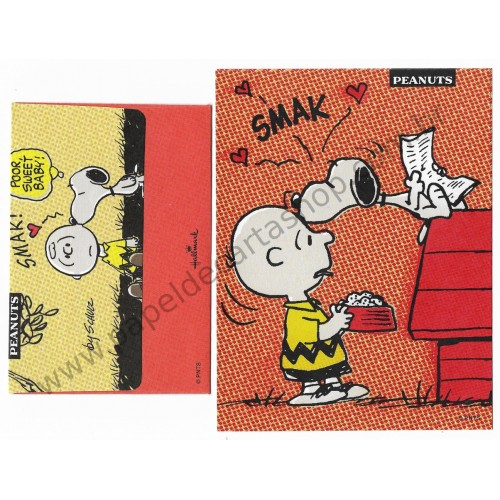 Conjunto de Mini Papel de Carta Snoopy and Charlie Smak