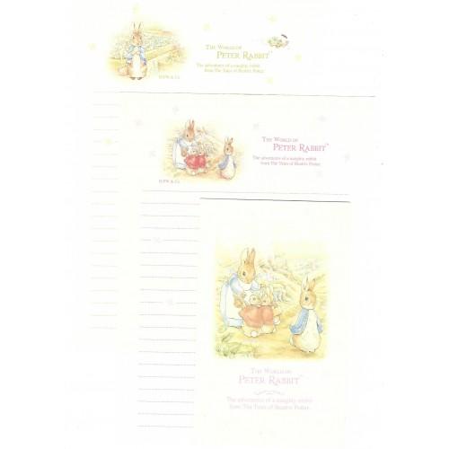 Conjunto de Papel de Carta Importado Peter Rabbit 08 DUPLA
