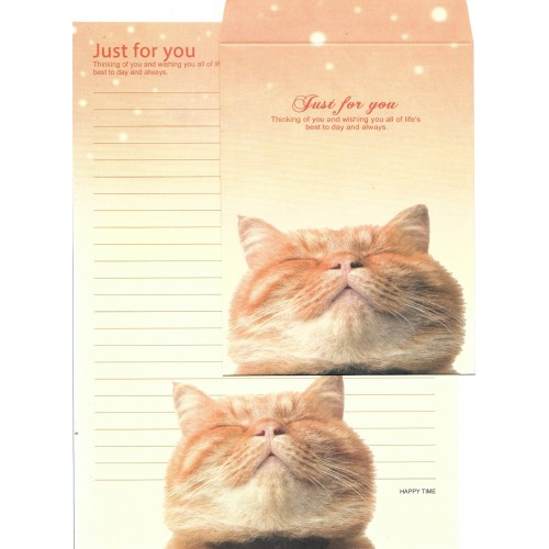 Conjunto de Papel de Carta Importado Happy Time Cat 1