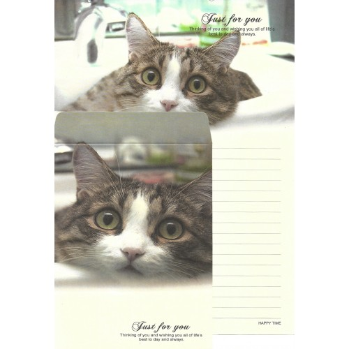 Conjunto de Papel de Carta Importado Happy Time Cat 3