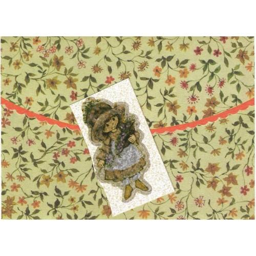 Postalete Antigo Importado Mary Hamilton Ambassador Cards