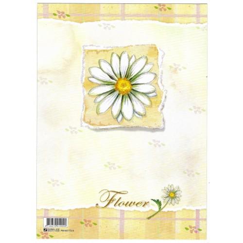 CAPA & Conjunto de Papel de Carta Shinn Jee Flower P180173-9