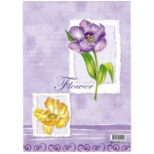 CAPA & Conjunto de Papel de Carta Shinn Jee Flower P180173-5