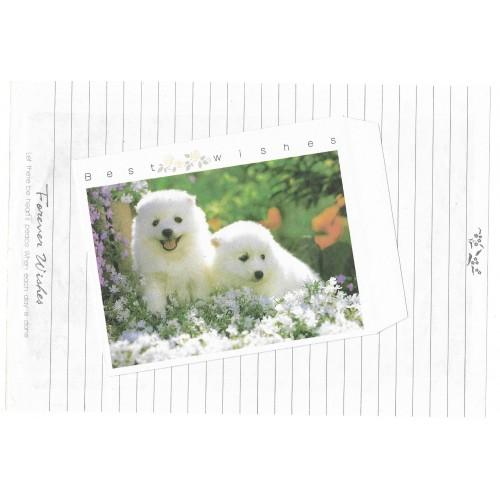 Conjunto de Papel de Carta Antigo Importado Best Wishes B018