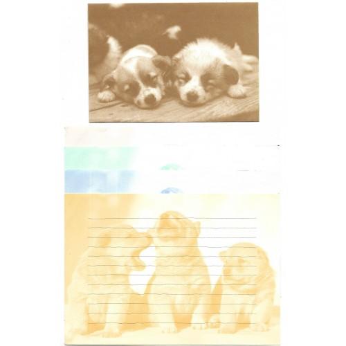Conjunto de Papel de Carta Vintage Dog is Cute SAN-X